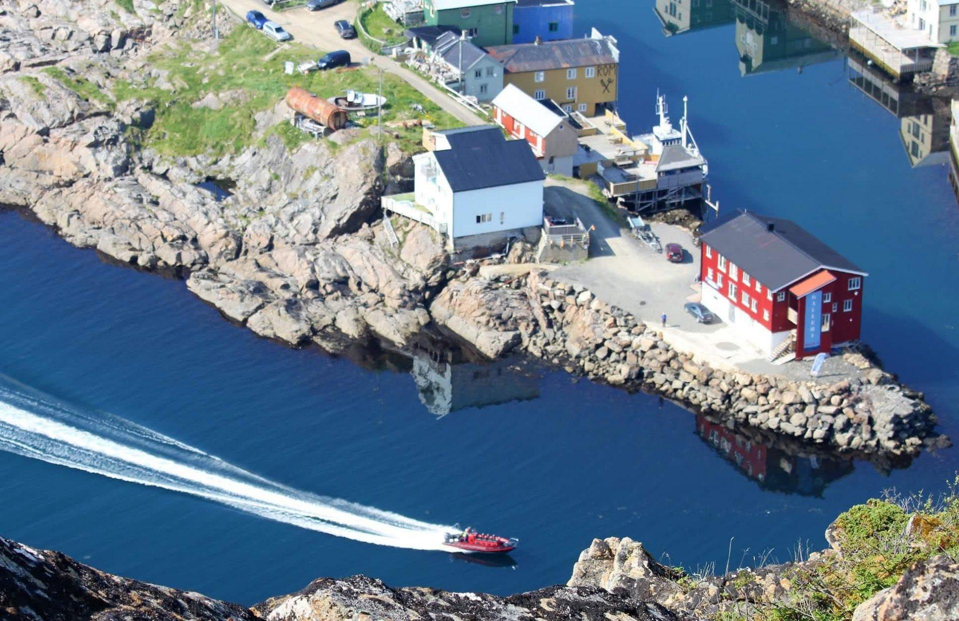 Seasafari Øksnes